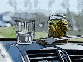 Выпивка на даче в автомобиле закончилась лишением прав