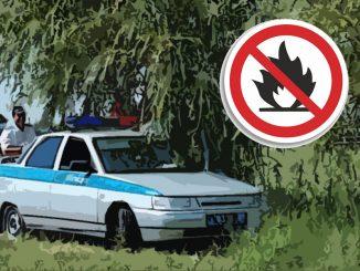 ГИБДД не пускают в лес машины отдыхающих: законно ли?