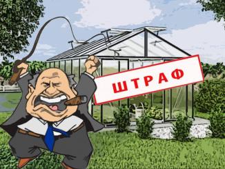 Штрафы за теплицу: удар по огородникам или вымысел?