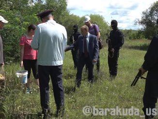 Сбор грибов без лицензии: первые штрафы уже в Уссурийске